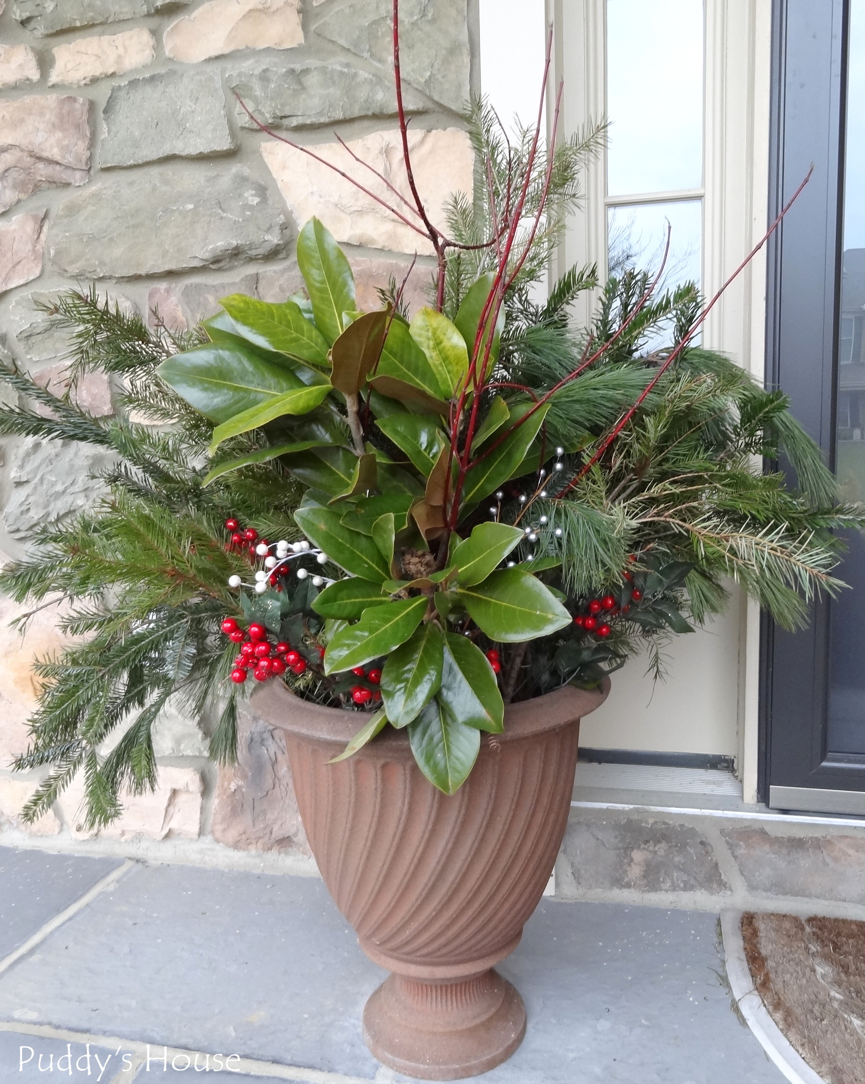 Christmas Greens magnolia berries urn on porch Puddys
