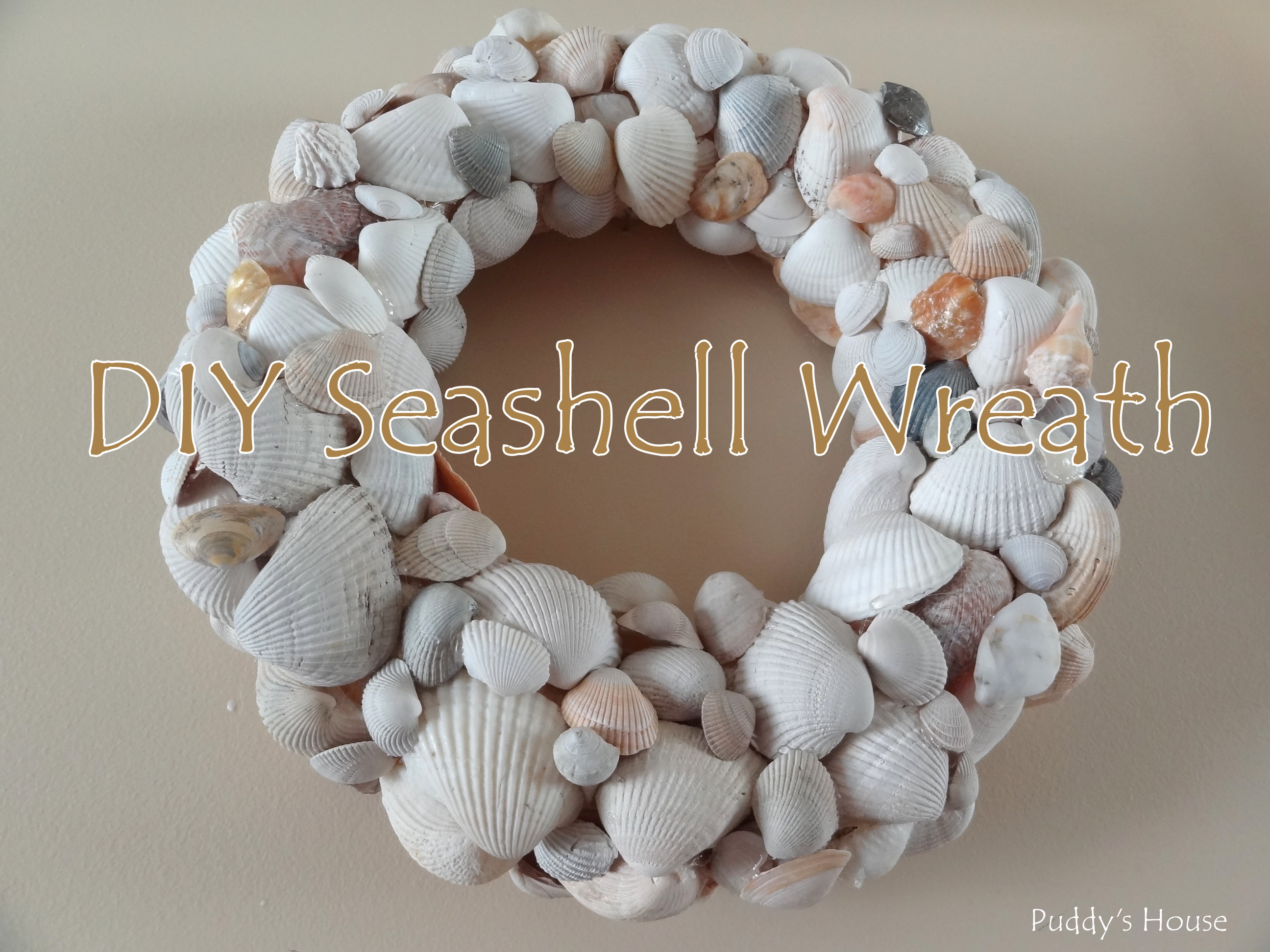 Diy seashell wreath puddy 39 s house - Diy projects with seashells personalize your home ...