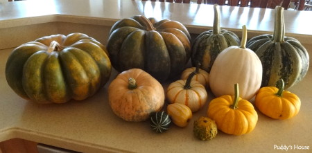 Fall Decorating - pumpkins ready to decorate