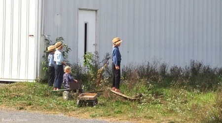 Tractor Ride  - amish children watching