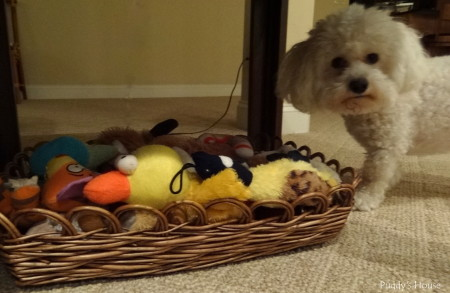 Dog supply organization - baskets for toy storage