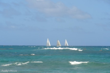Winter blogging - st marteen sailboats