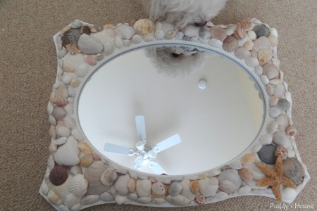 DIY Seashell Mirror - Puddy looking at finished product