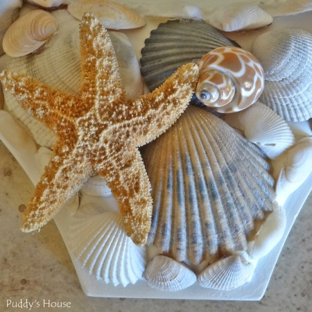 DIY Seashell Mirror - after corner with starfish2
