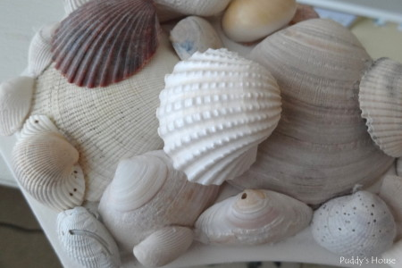DIY Seashell Mirror - corner outer and top rows of shells on mirror