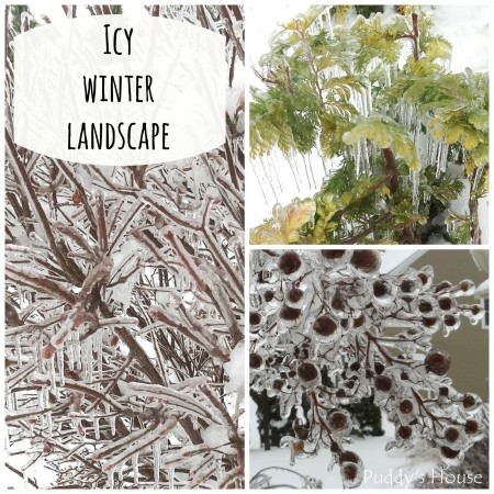 icy winter landscape collage - puddys house
