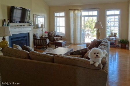 Living Room Reveal - from foyer with puddy on couch
