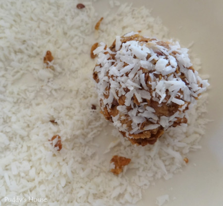 Protein balls - roll in coconut
