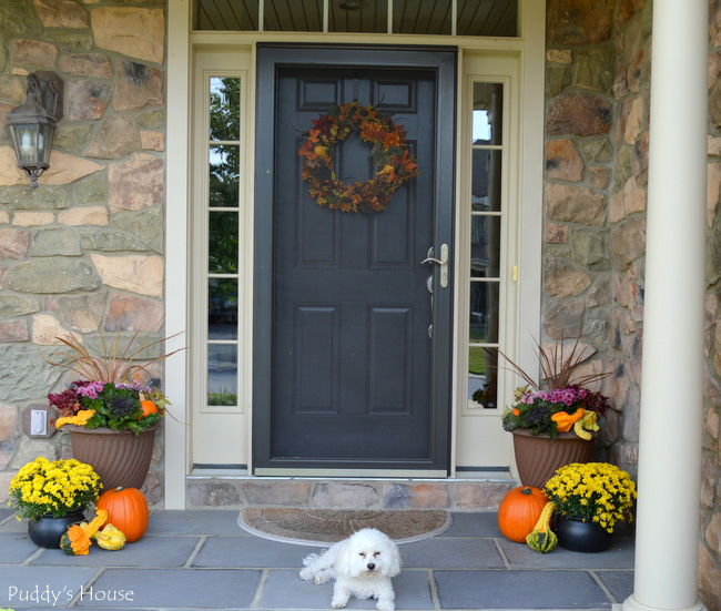 fall porch decor - view with puddy