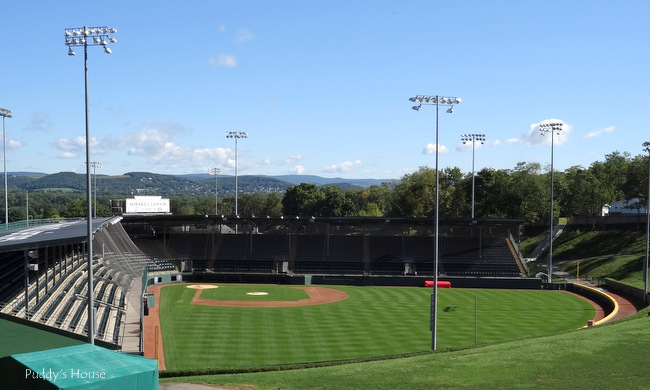 Finger Lakes - Little League World Series field